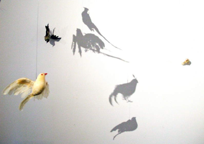 Debra Stuckgold, Bounty, installation view
