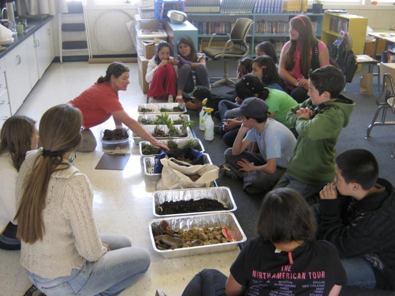 Molly Miner-classroom