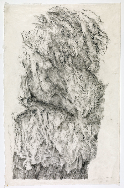 Zea Morvitz, Carrowkeel, Ballpoint pen and graphite on paper