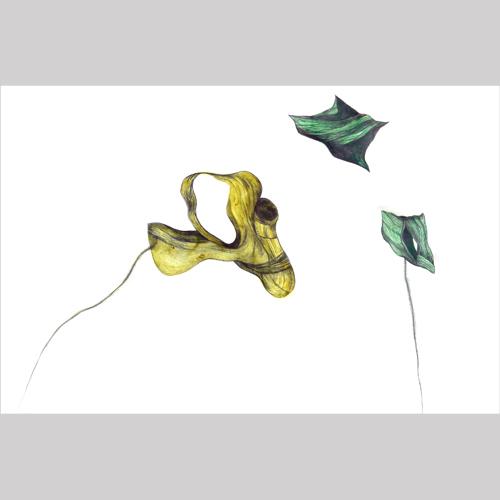 Zea Morvitz — Floater #3