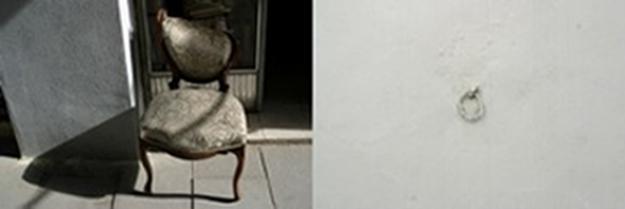 Myong-Ah Rawicher, Elective Affinities 2, photograph
