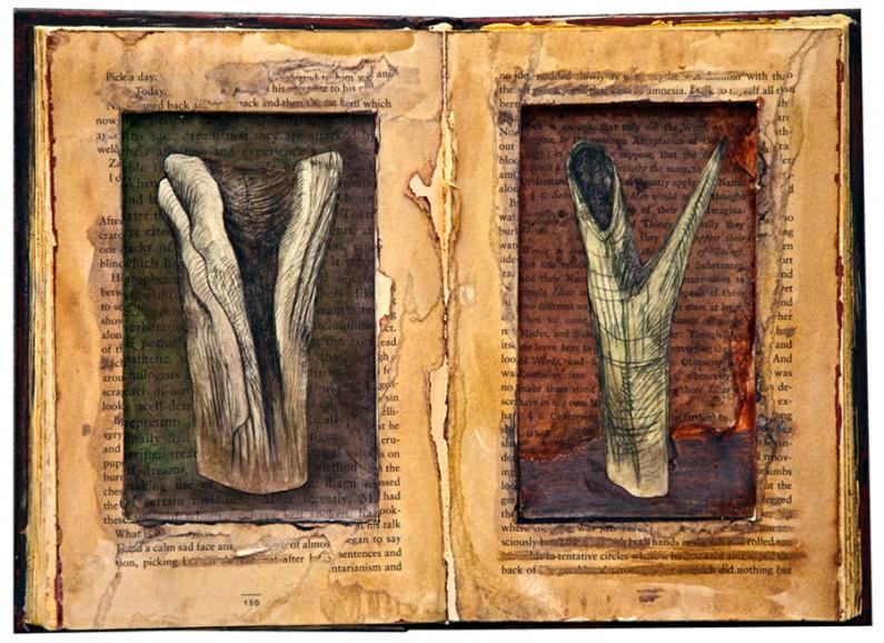 ZeaMorvitz-Natural-History2