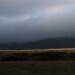 Ariana Aparicio, View from the Tomales Bay Trailhead, Vista desde el Sendero de la Bahia de Tomales thumbnail