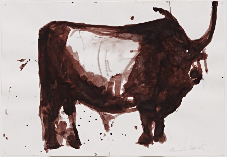 Mardi Wood, Maremmana Bull