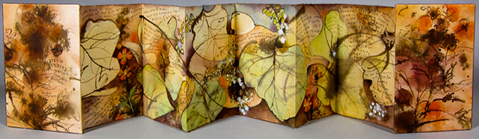 Wild Book Show: Field Notes and artist books by Andie Thrams