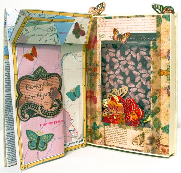 Marilyn Lo Russo, Butterflies of Point Reyes
