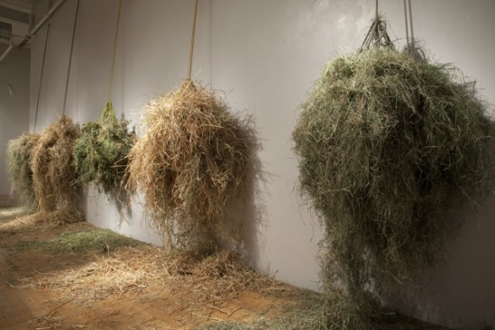 t.c. moore, Hay Nets, cotton, rope, hay, 28 x 14