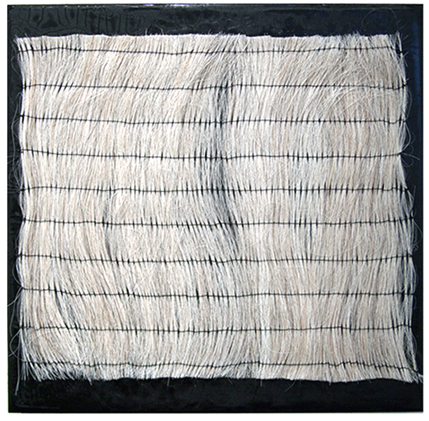 t.c. moore, untitled, horsehair and m/m on panel, 12 x 12 ins.