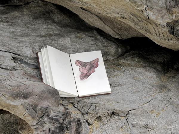 Tim Graveson, Notebook on drift log