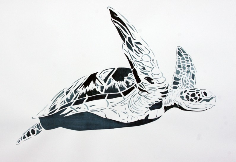 Xander Weaver-Scull, Green Sea-Turtle-22x30-ins, watercolor-monoprint stencil