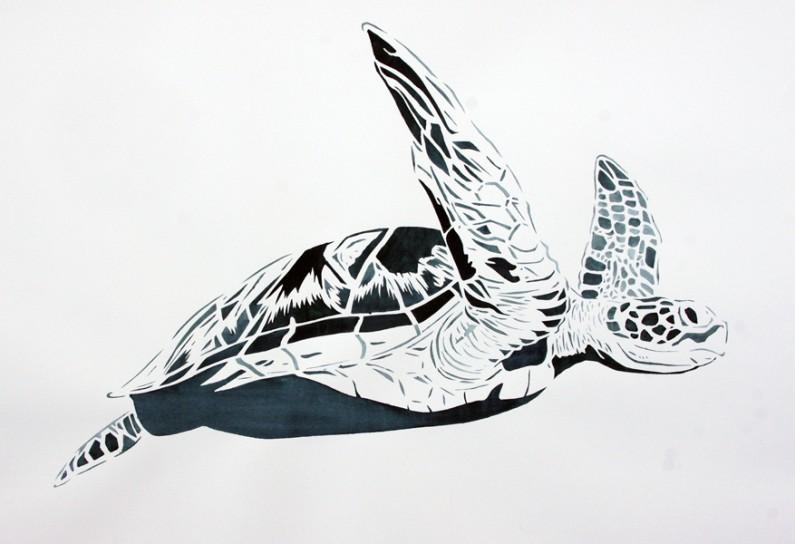 Xander Weaver-Scull, Green Sea-Turtle-22x30-ins, watercolor-monoprint stencil