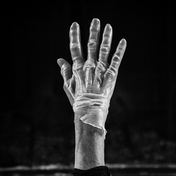 Marna Clarke, Hand, Photograph, 16x16