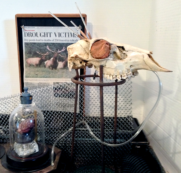 betty Woolfolk, Drought Victims, installation detail
