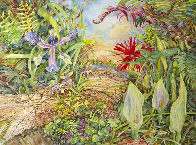 Linda MacDonald, Arum Trilogoy, watercolor, 22 x30