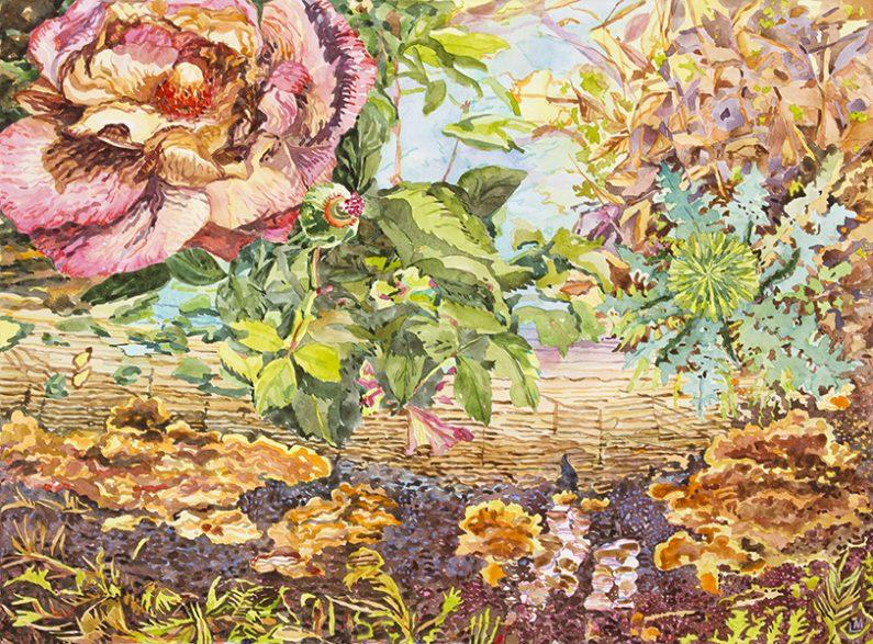 Linda MacDonald, Beauty the Beast, watercolor, 22 x 30