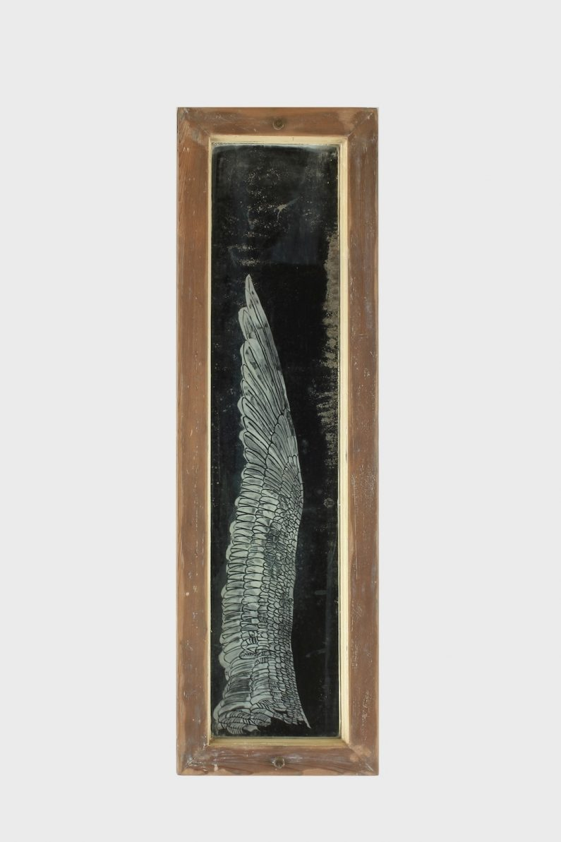 t.c. moore, albatross
