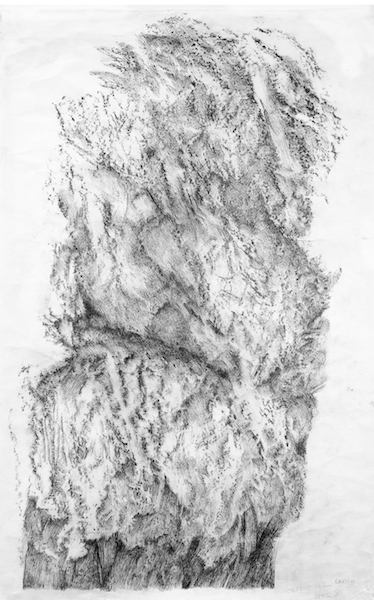 Zea Morvitz: Rising to the Surface, works on paper