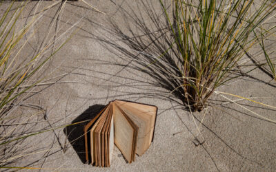 Tim Graveson: Books at the Beach, no knowledge was lost