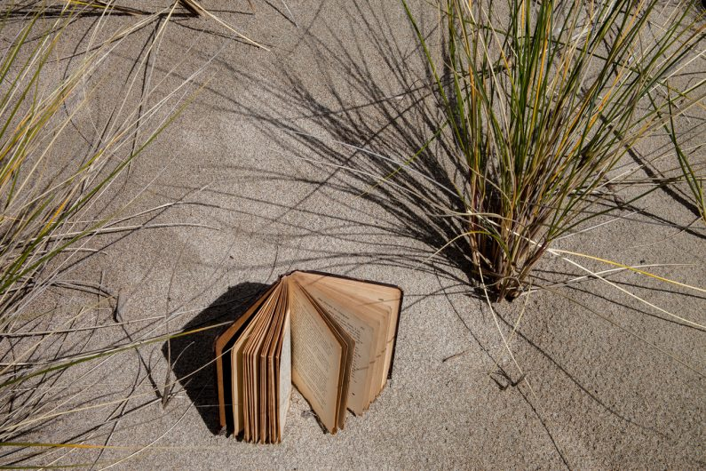 Tim_Graveson, Book in the Dune