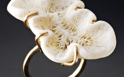 UNTAMED / Jewelry Outside the Box