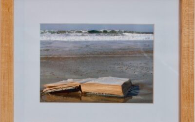 Member Artworks for Sale Online
